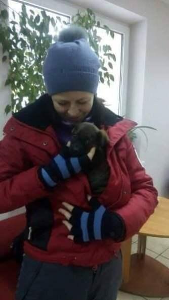 Ukrainian shelter at risk of losing electricity.