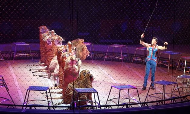 Ringling Bros Circus – 'Cruelest Show on Earth' – Finally Ends!