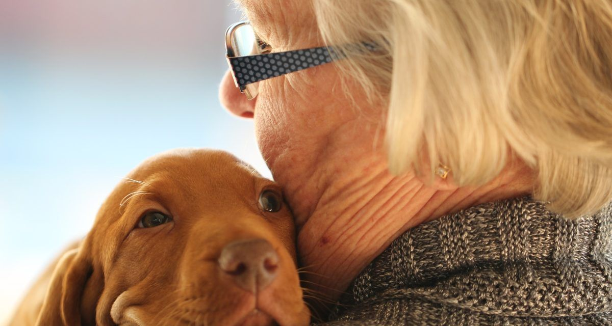 With a Little Help, the Sick and Elderly CAN Keep their Beloved Pets