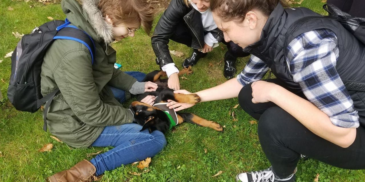 Students Get to Play with Dogs in Fundraiser Benefitting School Org. and Shelter