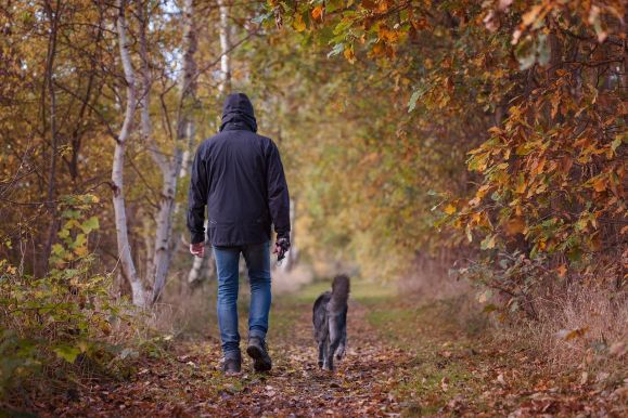 Man walking dog on a forest trail.