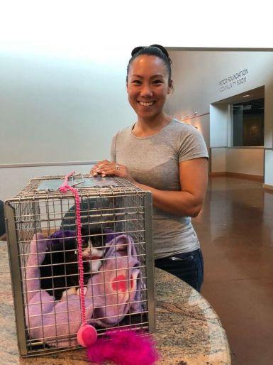 Earless kitten gets new home