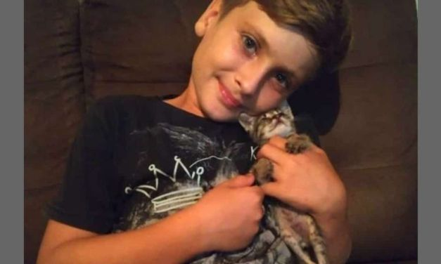 VIDEO: Boy Builds Tiny Wheelchair for Kitten Who Cannot Walk
