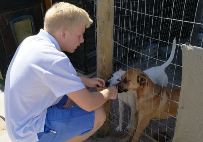 This Teen Started A Recycling Drive Just to Help Shelter Animals