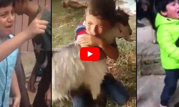 VIDEO: Compassionate Children Refuse to Let These Animals Be Slaughtered