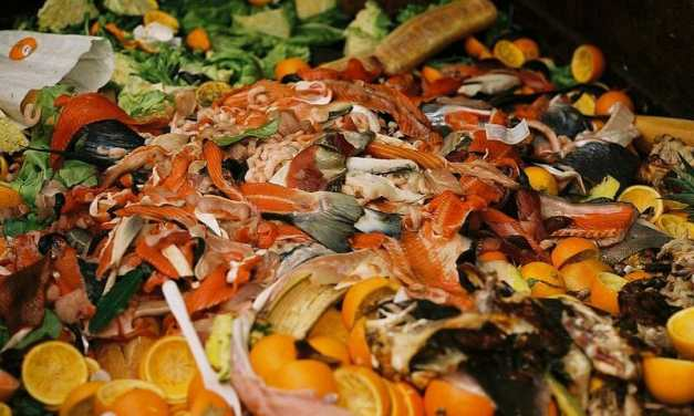 South Korea Leads the Way in Ending Food Waste by Recycling 95% of Leftovers