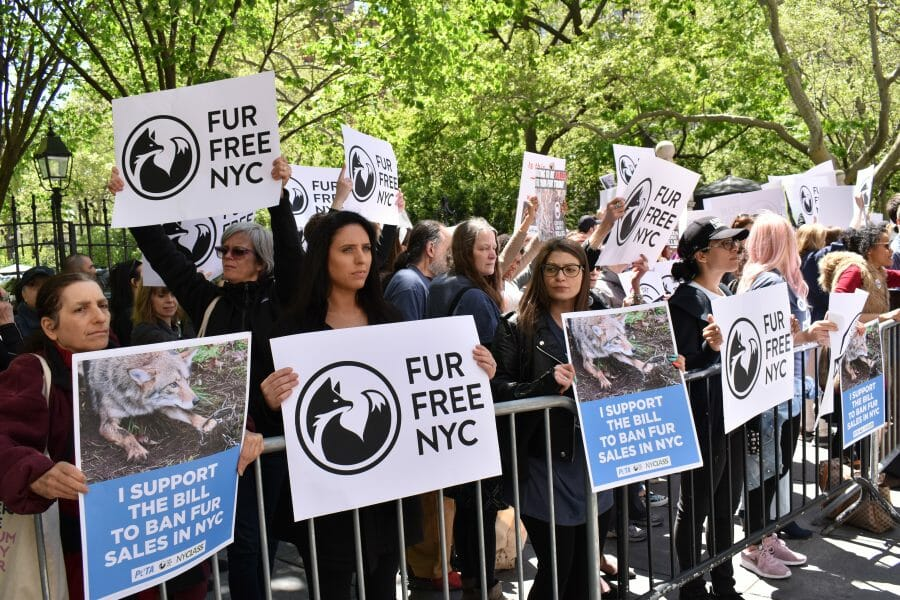 New York Could Become the Next City to Ban Fur