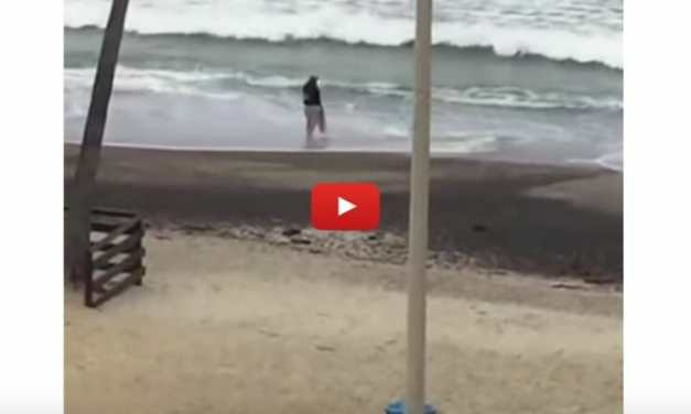 VIDEO: Kind Homeless Man Saves Stranded Baby Shark