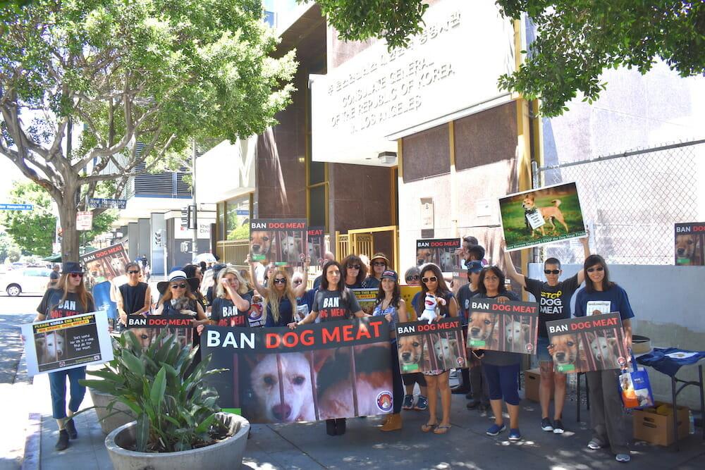lady freethinker dog meat protest