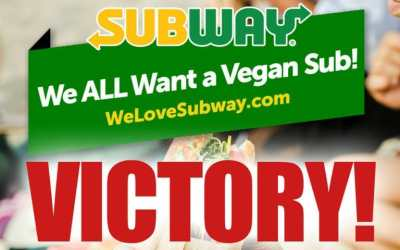 vegan subway meatball