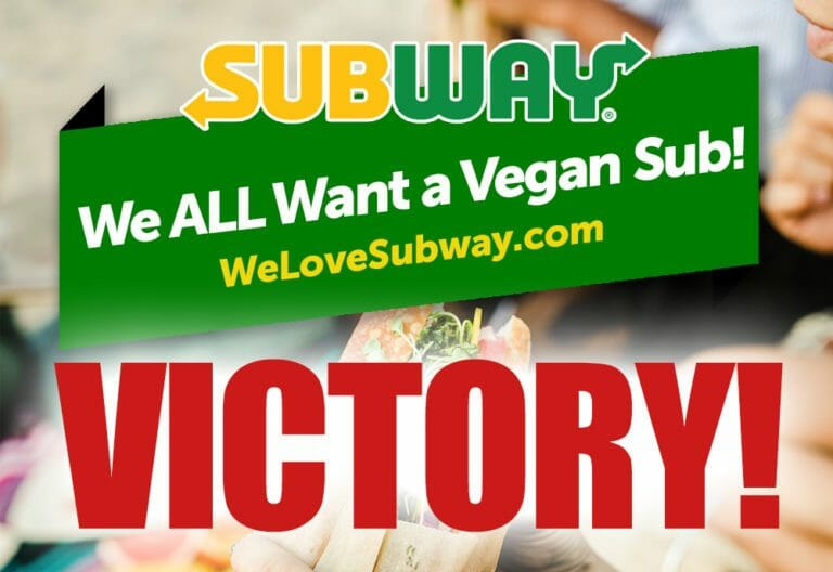 Yum! Subway Announces Debut of Plant-Based-Meatball Sub