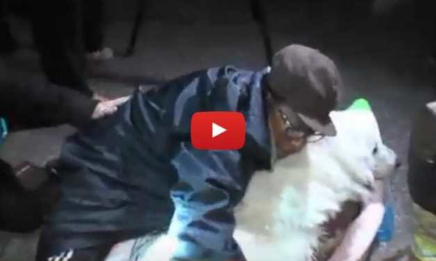 VIDEO: Firefighters Rescue Puppy Trapped 50 Feet Underground