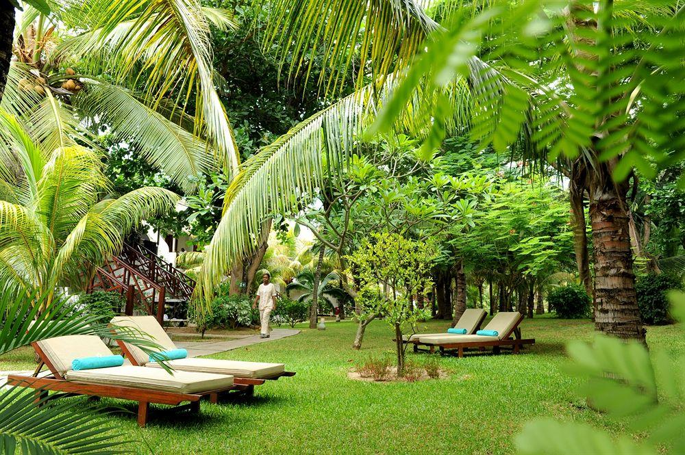 alt-chaises-longue-jardin-tropical-hôtel-coin-de-mire-mauritius
