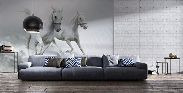 alt-papier-peint-mural-chevaux-blancs-My-Loview