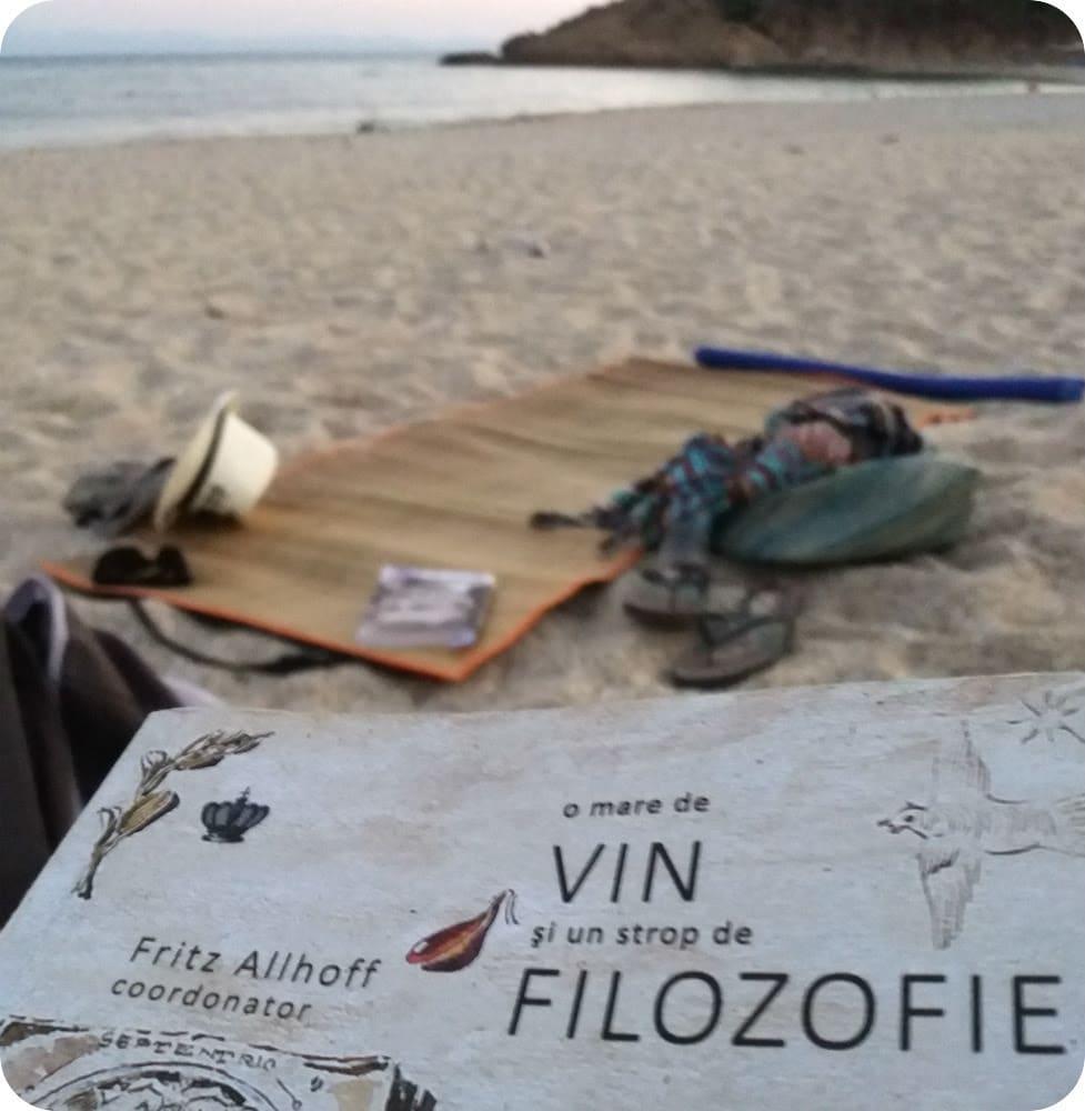 Gastronomie si lectura, adica mancare, un vin si o carte buna pe nisipul de la mare