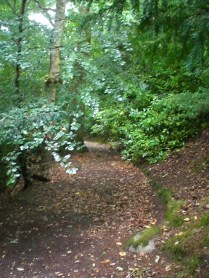The lane up to the top of Tomnahurich