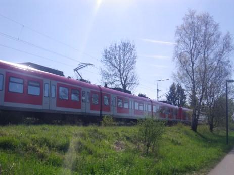 IMGP6126