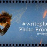 Photo prompt round up – Gold #writephoto