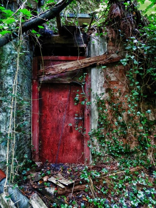 REd door derelict ireland