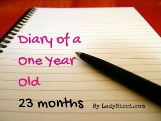 Diary of a one year old - 23 months