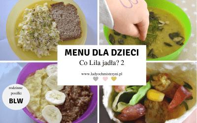 Przepisy dla dzieci – co Lila jadła w środę? 2