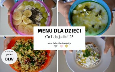 Zdrowe przepisy dla dzieci BLW – co Lila jadła? 25