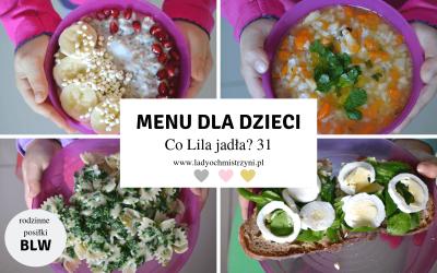 Zdrowe przepisy dla dzieci BLW – co Lila jadła? 31