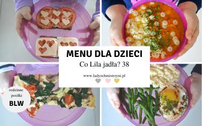Przepisy dla dzieci BLW – co Lila jadła? 38