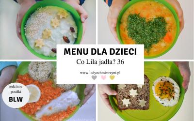 Przepisy dla dzieci BLW – co Lila jadła? 36