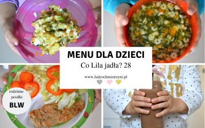 Przepisy BLW dla dzieci – co Lila jadła? 28