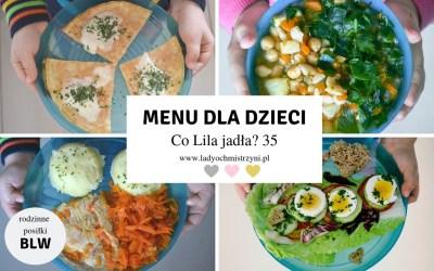 Przepisy dla dzieci BLW – Co Lila jadła w środę? 35