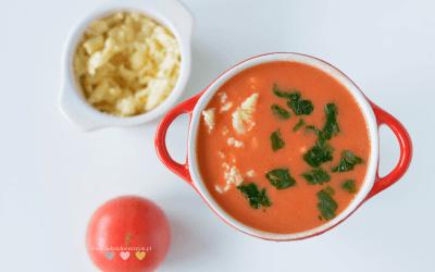 Zupa pomidorowa ekspresowa BLW