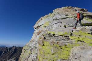 Scaling the Dome