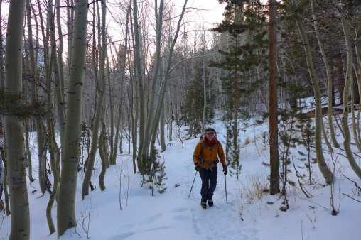 Cold trip back - North Fork Big PIne Creek Trail