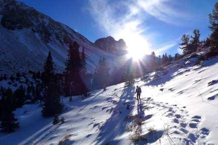 Last sunlight - North Fork Big PIne Creek Trail