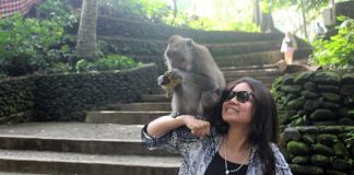 Sacred Monkey Forest Sanctuary Ubud Bali - 5