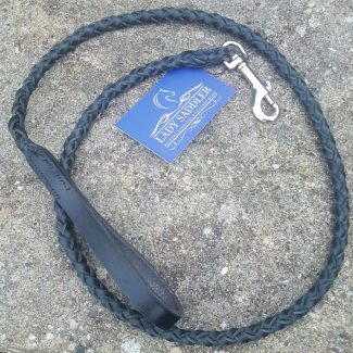 Plaited dog lead