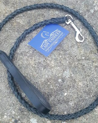 Plaited dog lead