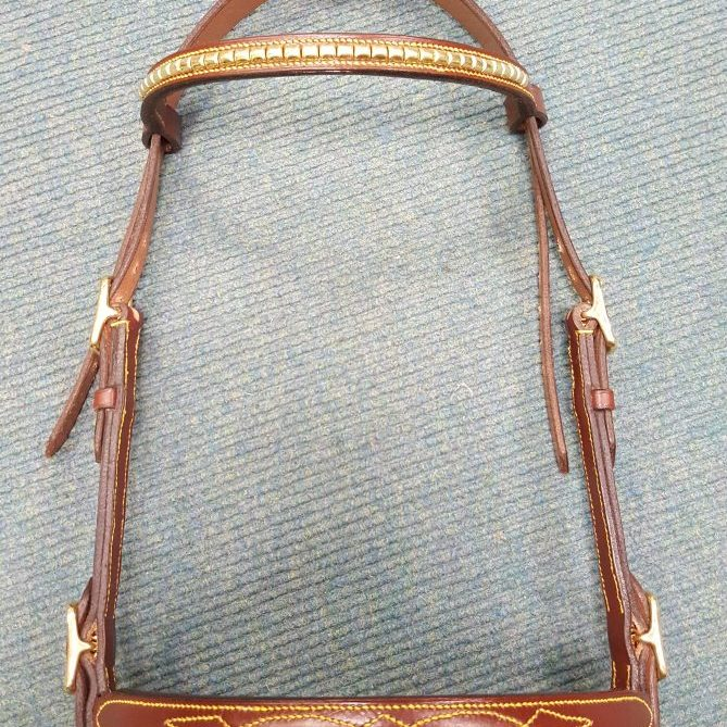 Inhand Bridle