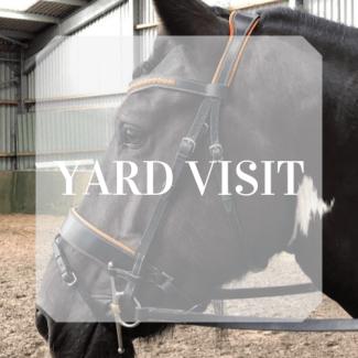 Yard Visit