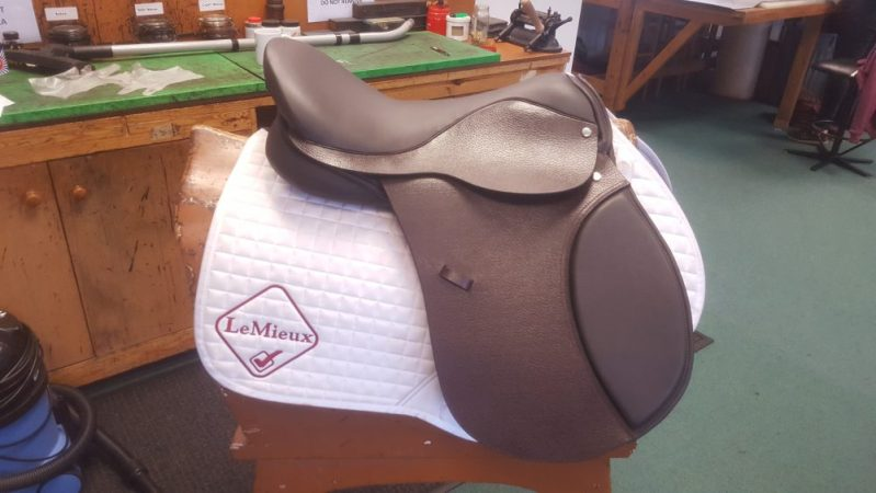 Level 3 Saddle