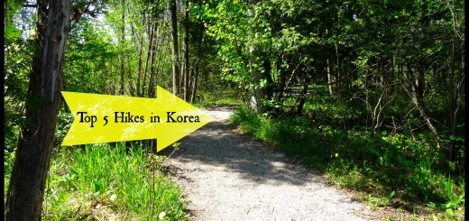Top 5 Hikes in Korea