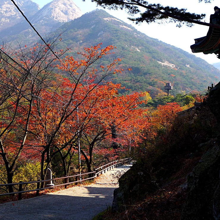 Hiking to the Golden Buddha in Seoul ⋆ The World As I See It