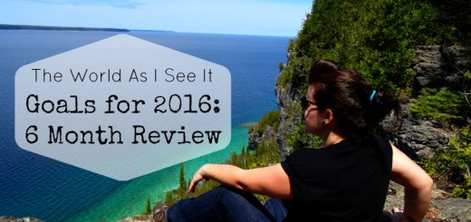 2016 Six Month Review