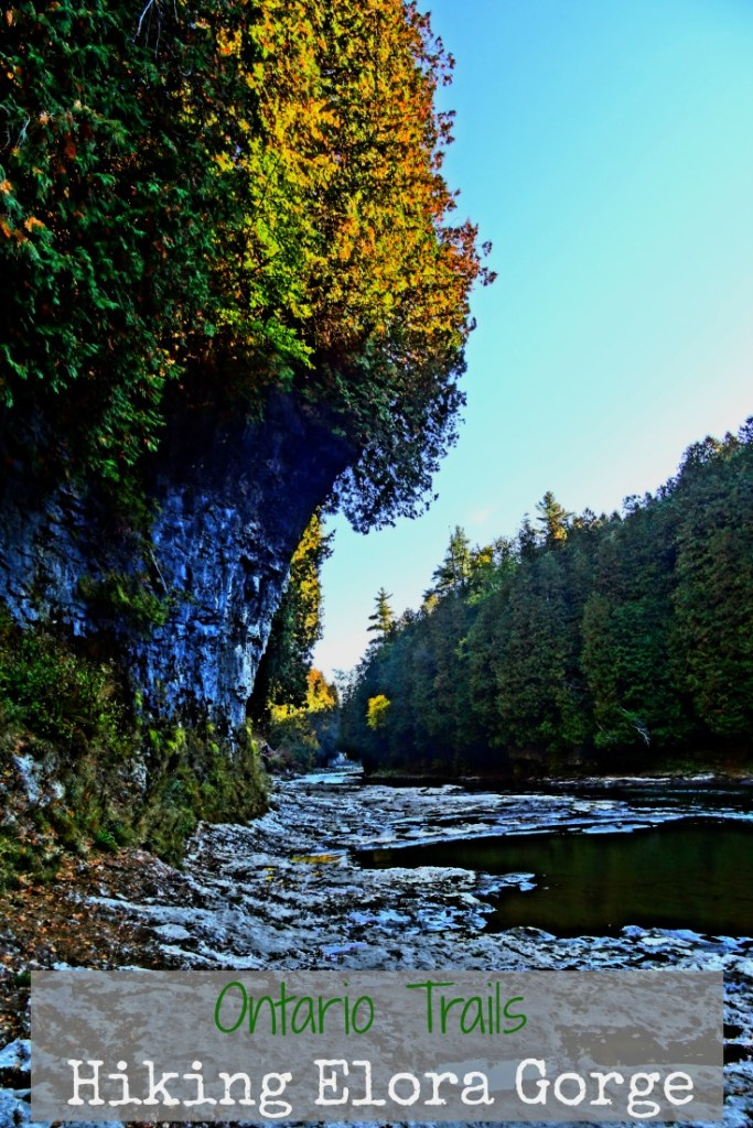 Hiking Elora Gorge