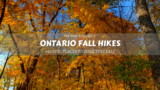 Dreamy Ontario Fall Hikes You'll Love ⋆ The World As I See It