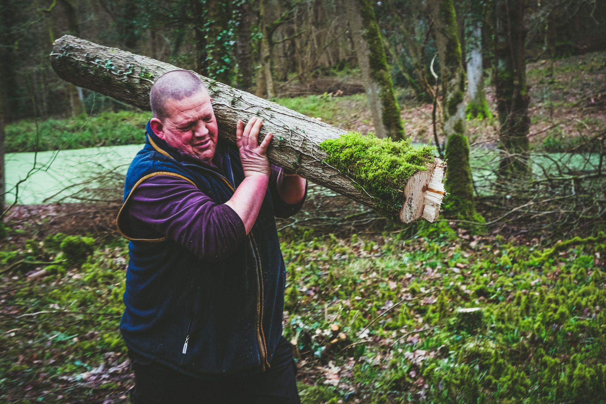 Coppicing the woods at Lady's Wood
