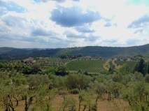 "On the way to ""Caparsa"" winery from Radda in Chianti"
