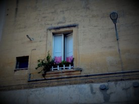 Flowered window on the wall, Lecce
