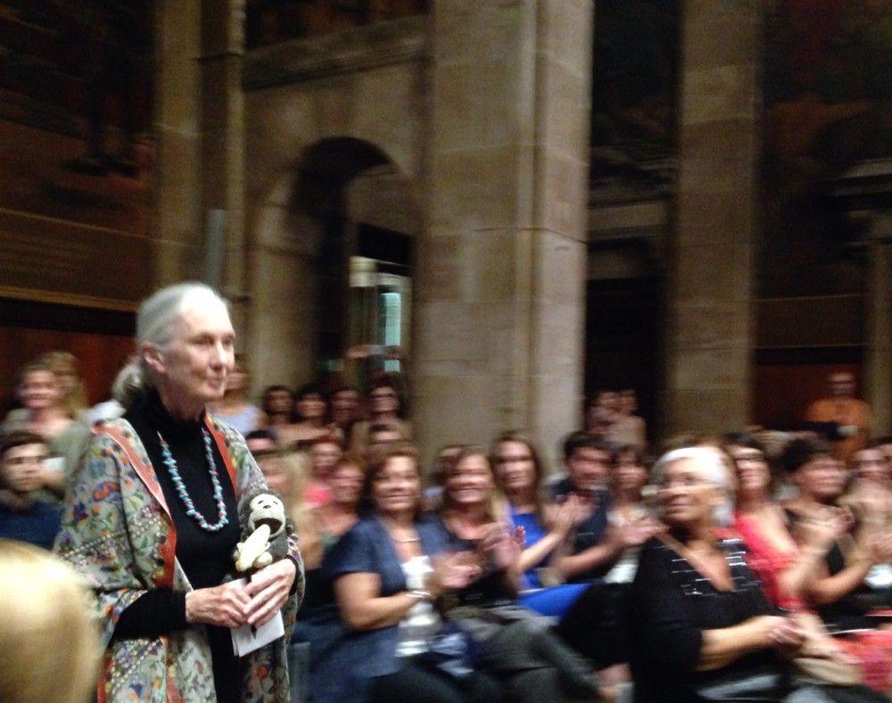 Jane Goodall Premi Internacional de Catalunya